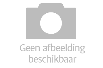 Schaal 6: Gourmet- Fondue Steengrillschaal